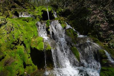 water.fall